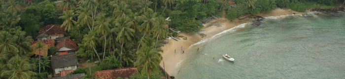 Палме и плажа